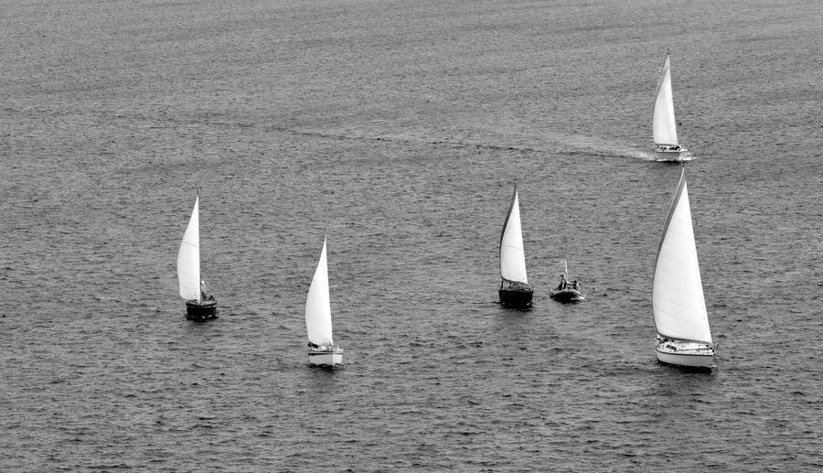 France Marseille Adventure Blackandwhite Competition Day Eye Em Travel Mast Nature Nautical Vessel No People Olefingirl Outdoors Regatta Sailboat Sailing Sailing Ship Sea Sports Race Tall Ship Transportation Water Yacht Yachting
