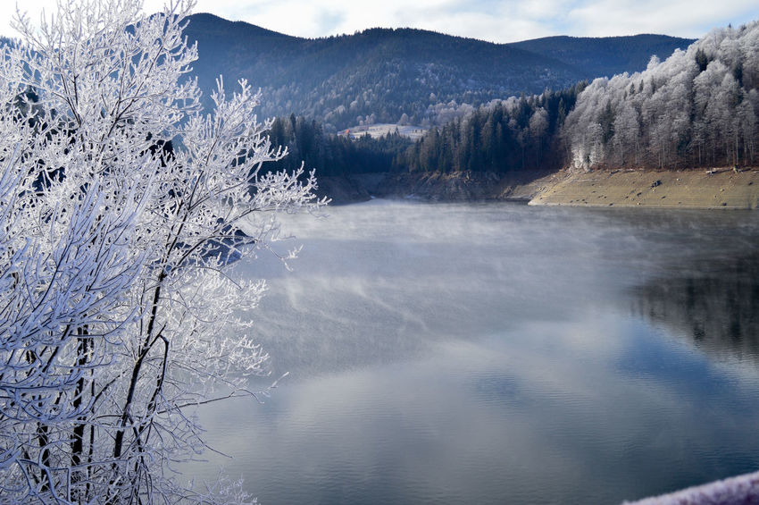 Mountain Calm Nature Still Blue Cold Frozen Water Tree Mountain Winter Forest Lake Snow Cold Temperature Pinaceae Reflection Dam Reservoir Frost Ice Crystal Standing Water EyeEmNewHere