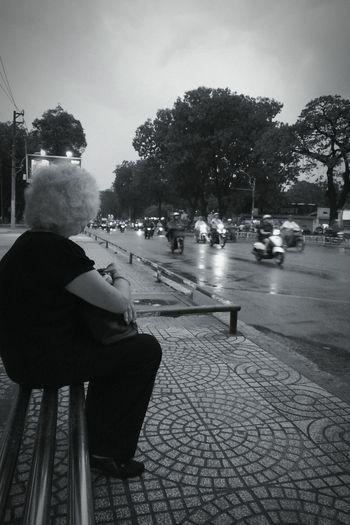 Oldlady Bus Stop Bus Waiting
