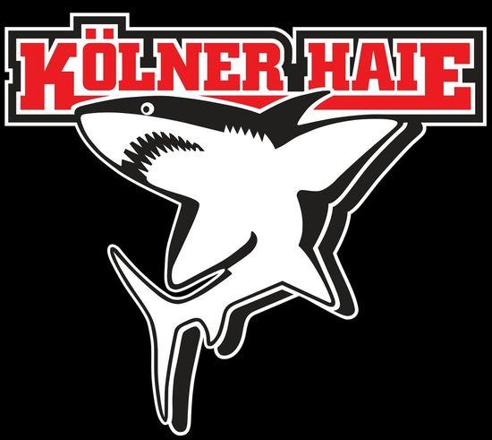 Eishockey Kölner Haie