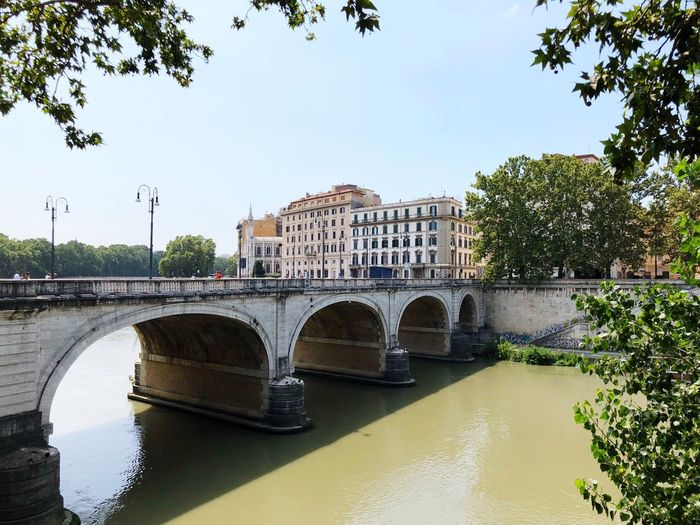 Bridge Roma