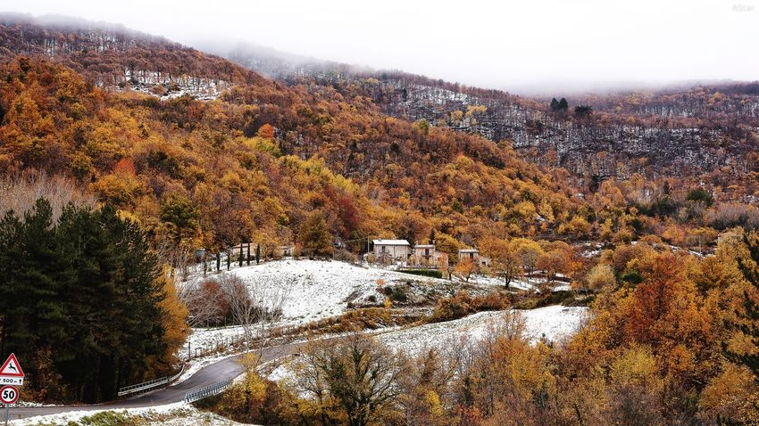 prima neve a Toscana Tree Autumn Nature Landscape Beauty In Nature Winter Outdoors No People Tranquility Scenics Tranquil Scene Snow Cold Temperature Mountain Day Forest Sky