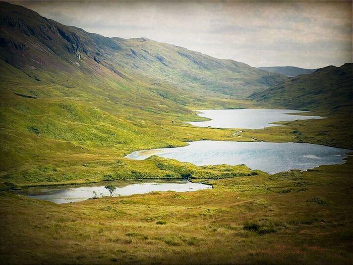 Relaxing Nature Lake