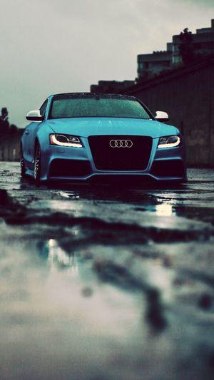 Audi candır herşey heycandır Cheese! Faces Of EyeEm Dünyanın First Eyeem Photo Audi S5 Farkındalık Erdialtun