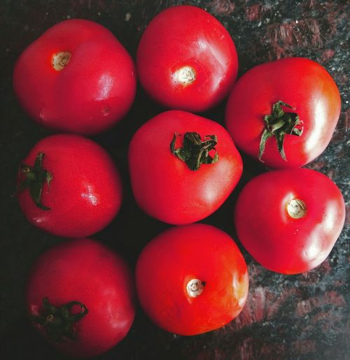 My Year My View Tomatoes🍅🍅 Tomatina Healthy Eating Tomatoes From My Garden , Nature Tomando Fotos Red Tomatoes No People Freshness Food Red Red Healthy Food Hygiene Hygiene Products DailY BASIS Tomato Love