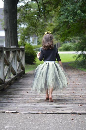 Rear View Of Girl Wearing Tutu Walking On Boardwalk At Park