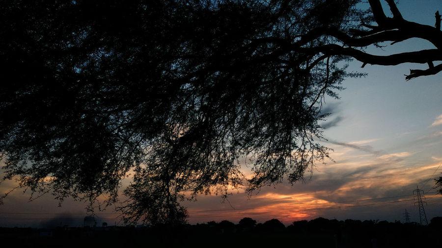 EyeEm Selects Tree Sunset Astronomy Milky Way Silhouette Mountain Sky Landscape