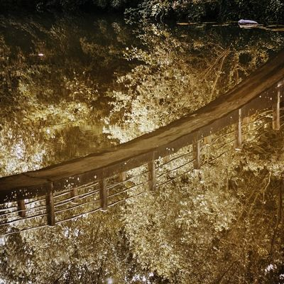 Vscocam River Bridge Nature weekend