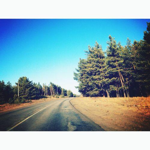 Дорога домой?