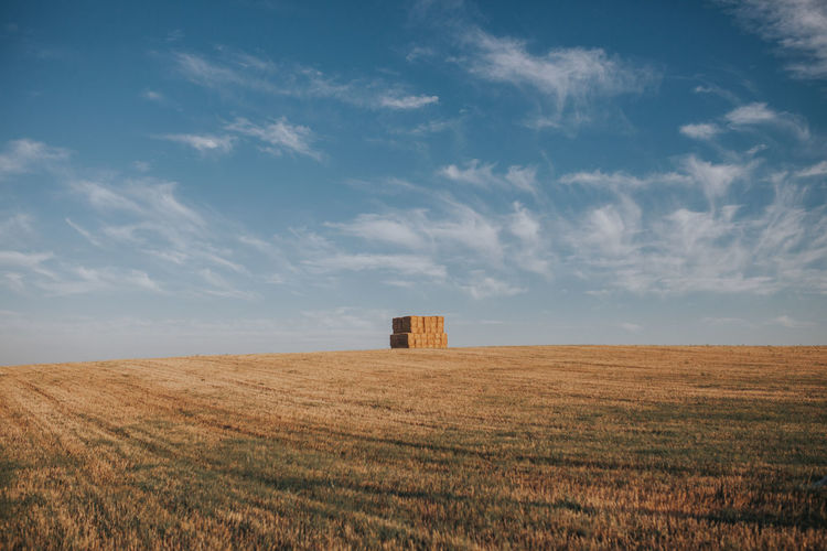 Agriculture Field Hay Field Hay Bale Summertime Agricultural Agricultural Field Agricultural Land Agriculture Alentejo Day Environment Farm Field Fields Hay Bales Land Landscape Nature Outdoors Plant Rural Scene Sky Summer Tranquility The Still Life Photographer - 2018 EyeEm Awards