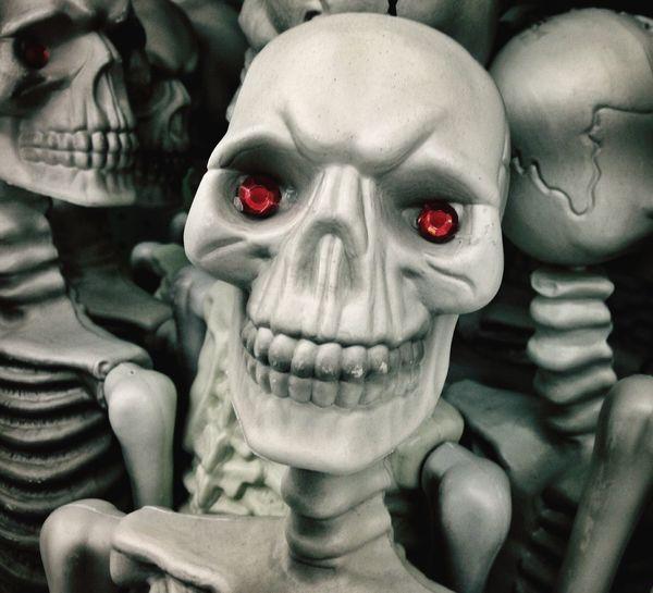 Happy Halloween Skeleton Halloween Horrors Skeletons Scary Halloween Scary skeleton with red eyes . Skull Bones Skulls And Bones Skull Fine Art Photography The Magic Mission