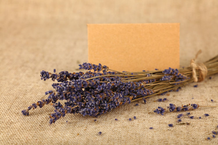 Greeting card with small bouquet of dried lavender flower on the table Still Life Lavender Freshness Table No People Close-up Selective Focus Bouquet Bouquet Of Flowers Dried Flowers Greeting Card  Card Blank Copy Space Valentine's Day  Valentine Love Communication Message Canvas Natural Tablecloth 17.62°