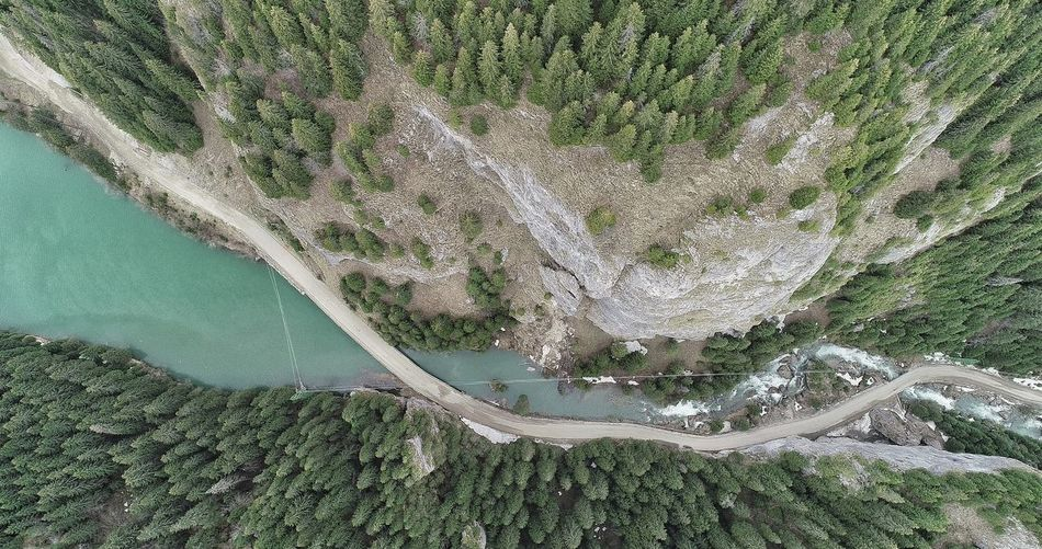 Aerial Photography Picea Abies River Summer Exploratorium Aerial Shot Summer Exploratorium Gourgeous View Water Tree Backgrounds Aerial View Full Frame High Angle View Grass Close-up Green Color Countryside Tranquility Elevated View Grassland Summer Road Tripping The Great Outdoors - 2018 EyeEm Awards