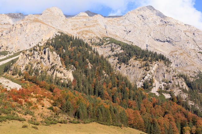 Karwendel mountains in autumn maple back on. Austria Autumn Beauty In Nature Day Hinterriß Holliday Karwendelgebirge Landscape Maple Floor Mountain Mountain Range Mountains Nature Nature Conservation No People Outdoors Range Scenics Sky Tranquil Scene Tranquility Tree Tyrol Vacation Vomp