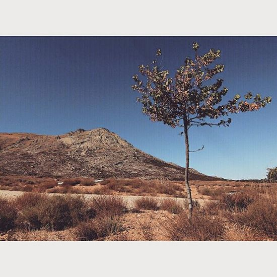 Paseo por el desierto de Sonora en Bustarviejo Sierrademadrid Instafit trekking