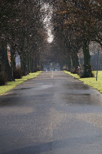 Asphalt Beauty In Nature Day Empty Park Empty Path Empty Places In A Row Nature No People Outdoors Road Rows Rows Of Trees Sky The Way Forward Tranquility Tree Tree Trunk Trees Uniformed 8955