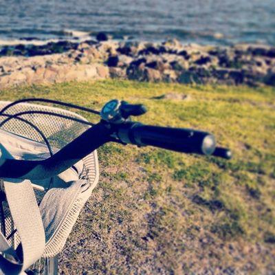 El niño se compró una bicicleta en Buenos Aires y no la usa. Viaja a Uruguay y renta una. Vamos, que soy caprichoso.