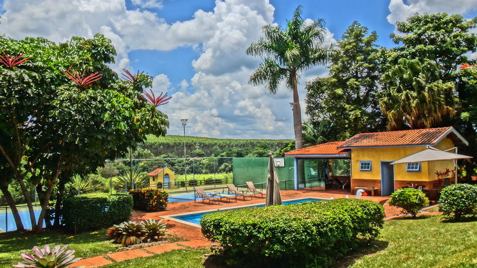 AVARE SAO PAULO BRAZIL Absence Architecture Building Exterior Built Structure Change Day Depth Of Field Empty EyeEm Team Farm Growing House Leading Outdoors Palm Tree Relaxing Moments Residential Structure Roof Rural Selective Focus Sky Sunlight Town Tree Tropical Climate