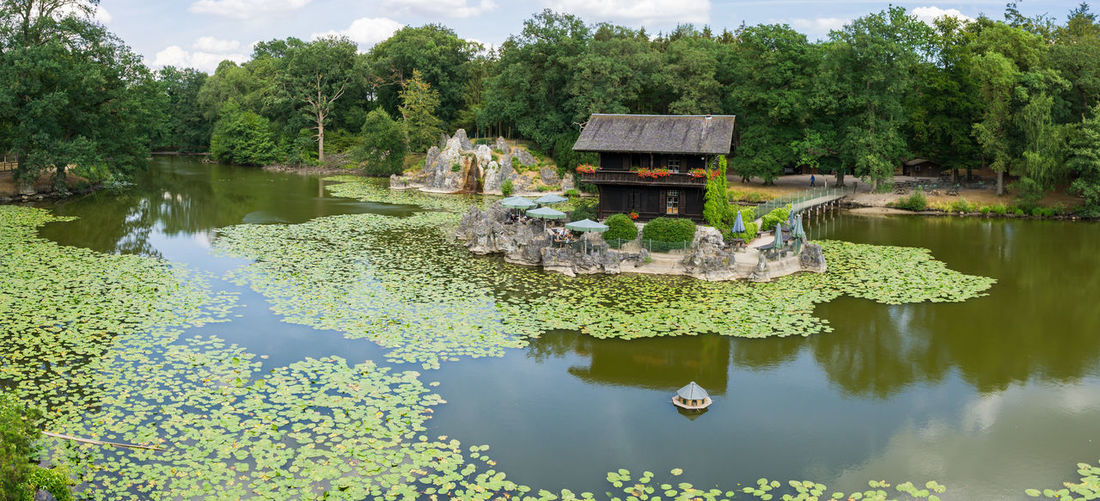 Zoo Beauty In Nature Day Floating Floating On Water Green Color Growth Lake Lotus Water Lily Nature No People Outdoors Plant Reflection Scenics - Nature Tranquil Scene Tranquility Tree Water Water Lily Waterfront