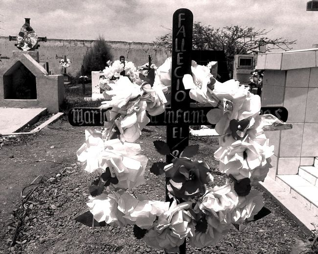Y dónde están los que dijeron venir Black And White Cementerio Corona Cruz Dead Death Deceased Defunct Difuntos Flower Gris Muerte Panteon Sepulcro Sepultura Tomb Tristeza Tumba