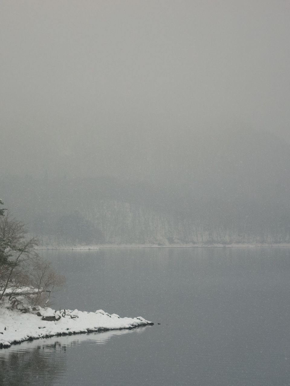 winter, cold temperature, nature, snow, tranquility, weather, tranquil scene, beauty in nature, scenics, outdoors, no people, day, landscape, fog, water, sky, tree