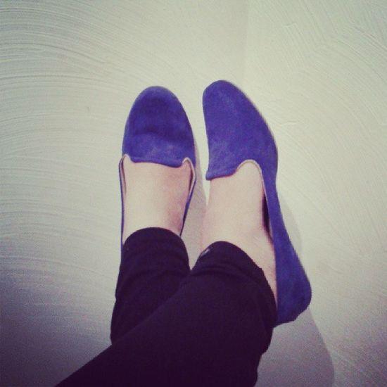 Sapato  Azul Igual Amor