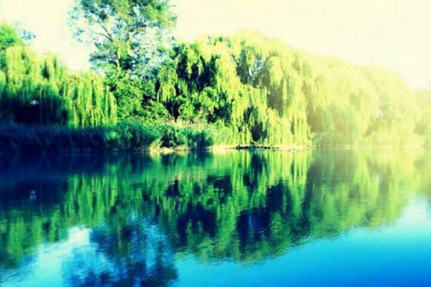 Relaxing Hungary Mirrorgram