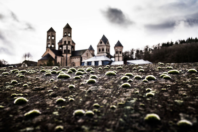 Unreal Mossy Wall Mossy Moose Church Architecture Nature Religion Remote Places Religion And Tradition Benedictine Monastery Benedictine Laacher See Maria Laach Maria Laach Abbey Monastery Place Of Worship Cloud - Sky Leicacamera Leica M-P