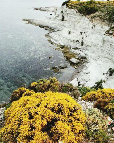Nature Deliklikoy Sea Alaçatı City Of Izmir Izmir tbt TBT