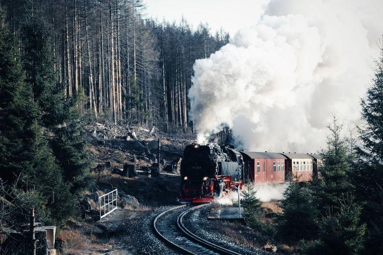 Train on railroad track amidst trees against sky