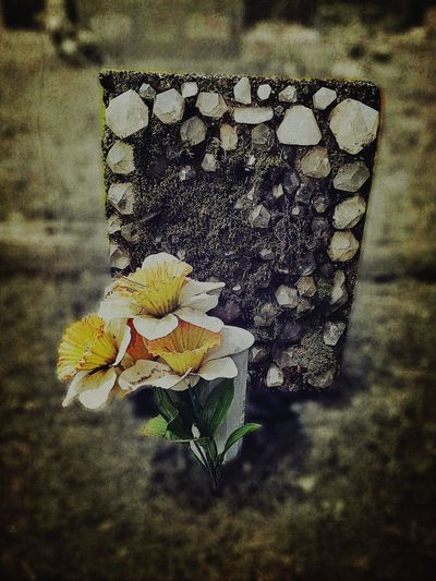 """Mistakes aren't good or bad. She learned long ago they're just mistakes. Clean it up; move along; and please stop talking about them."" - KG Secret Garden Cemetery Graveyard Countryside Behind The Veils Handmade Tombstone Yellow Flower Melancholy Super Retro"