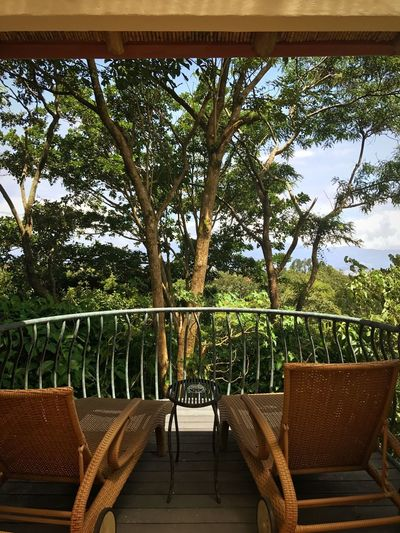 Chair Tree Growth Day Table Seat No People Outdoors Nature Sky Enchanted Forest Secret Garden Earth Costa Rica Nature Photography Nature_collection Naturelovers Relax Back To Nature Foliage Balcony View Balcony View Freshness Tree