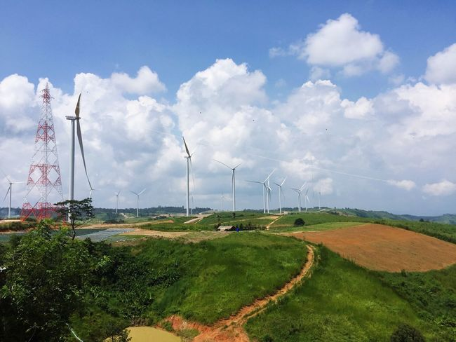 The City Light Wind Turbine Wind Power Sky Windmill Fuel And Power Generation Environmental Conservation Grass Alternative Energy Nature No People Renewable Energy Rural Scene Field Cloud - Sky Growth Landscape Green Color Outdoors Built Structure Tree