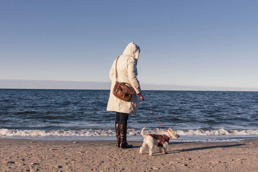 Winter Beach Weststrand Taking Photos Sunshine Dog Baltic Sea Beachphotography Cold Warm