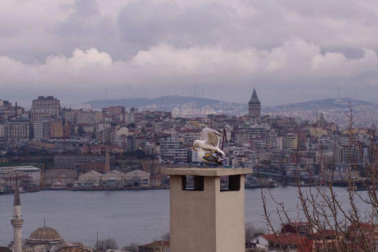 Istanbul Pentax People Turkey