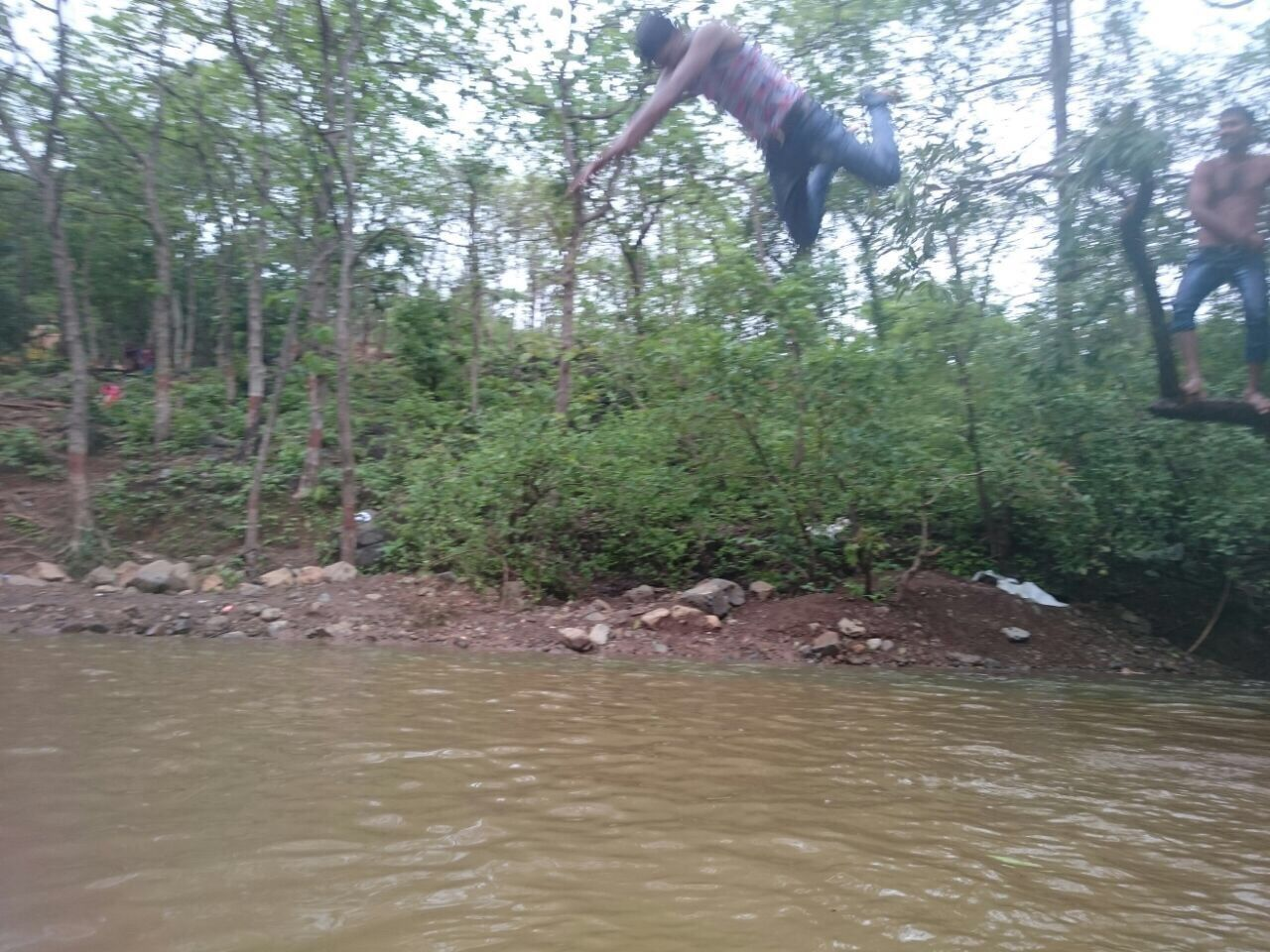 water, tree, river, day, nature, outdoors, forest, one person, jumping, full length, people