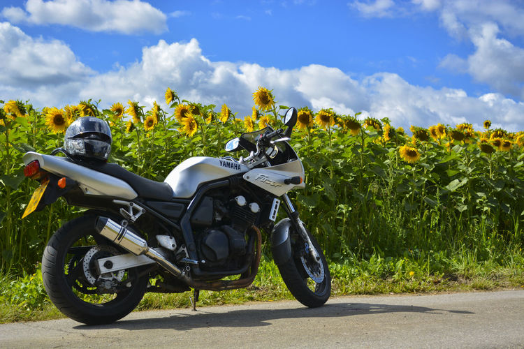 My Yamaha FZS600 Fazer in Hoo, Kent at the sunflower field. Fazer Ride Or Die Cloud - Sky Fzs600 Kent England Land Vehicle Mode Of Transport Motorbike Motorcycle Outdoors Road Stationary Summer Sunflowers Transportation Yamaha