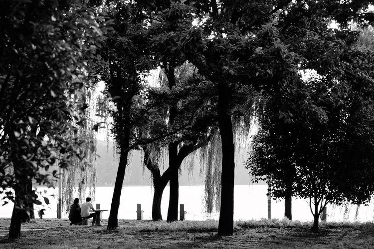 East Lake Black&White