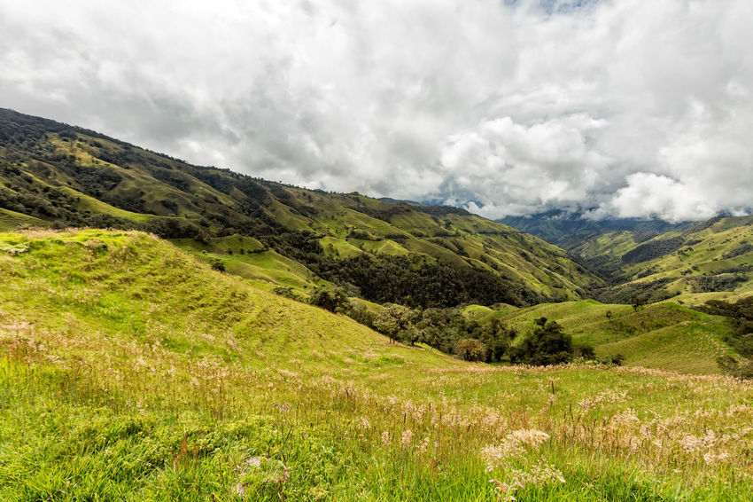 Clouds over pasture land in the mountains outside of Salento, Colombia. Cloud Colombia Farm Green Hiking Palm Pasture Quindío Rural Tree Trip Andean Cauca Colombian  Countryside Forest Hike Jeep Landscape Quindío Salento Tolima Trek Valley Wax