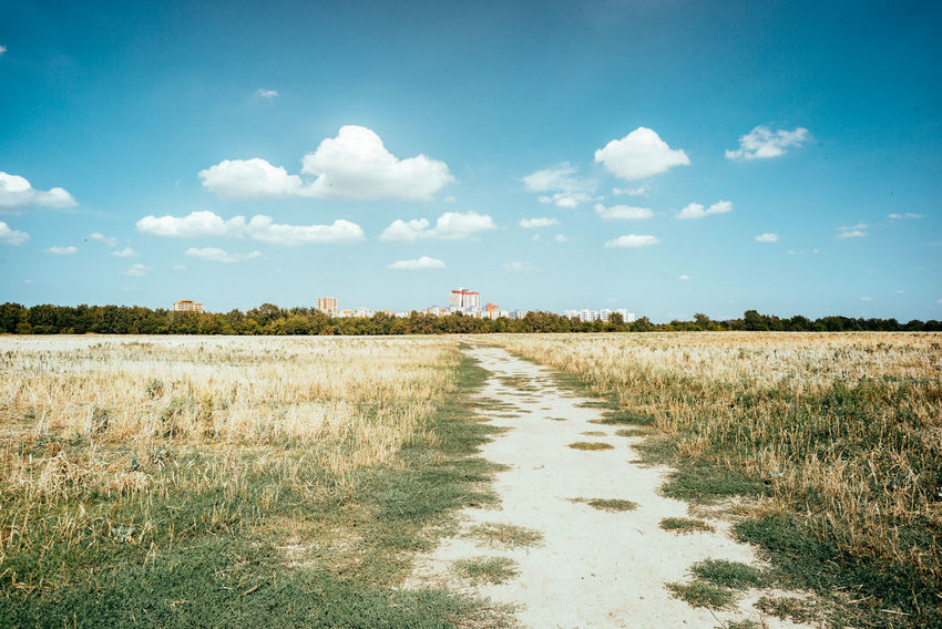A view of the South Berlin Agriculture Field Perspectives on Nature Summertime The Great Outdoors - 2018 EyeEm Awards Arid Arid Climate Arid Landscape Berliner Ansichten Blue Sky Day Daylight Environment Field Grass Land Landmark Landscape Nature No People Outdoors Plant Sky Summer Way