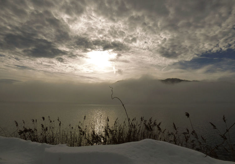 Beauty In Nature Cloud - Sky Cold Temperature Day FogyDay Horizon Over Water Landscape Mountain Nature No People Outdoors Scenics Sea Sky Snow Tranquil Scene Tranquility Tree Water Weather Winter