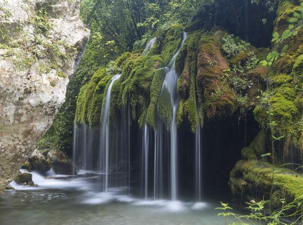Capelli di Venere waterfalls Capelli Di Venere Salerno Waterscape Capelli Casaletto Spartano Cilento Venere Waterfall Waterfall Photography Waterfall_collection Waterfalls