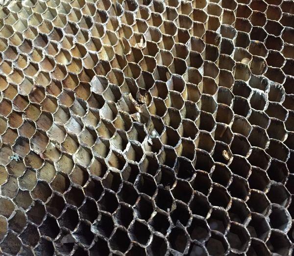 Full Frame Shot Of Honey Comb