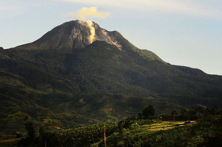 Beauty In Nature Davao City, Philippines Landscape Mountain Mountain Peak Mt. Apo Nature Outdoors Philippines Highest Peak Scenics Volcanic Landscape Volcano