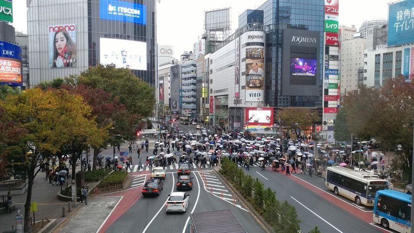 Street Large Group Of People City Street High Angle View Building Exterior Road City Traffic Crowd People Tokyo Japan Shibuya Crossing Shibuyacrossing Shibuya Scramble Shibuyascapes Shibuya Tokyo Shibuya Japan Shibuyascramble  Shibuya Shibuya,Tokyo Shibuya, Tokyo Shibuyascramble  People Crossing People And Places
