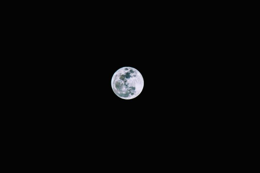 Wolf Moon Wolf Moon Moon Astronomy Moon Surface Night Planetary Moon Copy Space No People Tranquil Scene Space Nature Beauty In Nature Sky Outdoors