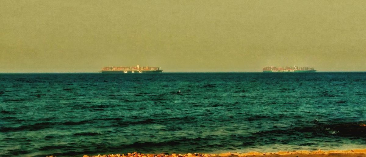 Cargoships Sea Sunset Animals In The Wild Nature No People Outdoors Sky Animal Wildlife Beauty In Nature Scenics Bird Large Group Of Animals Horizon Over Water Beach Water Animal Themes Day Wave The Land Of Beauty Tranquility Beauty In Nature This Is Egypt ❤ EyeEm Nature Lover UnderSea