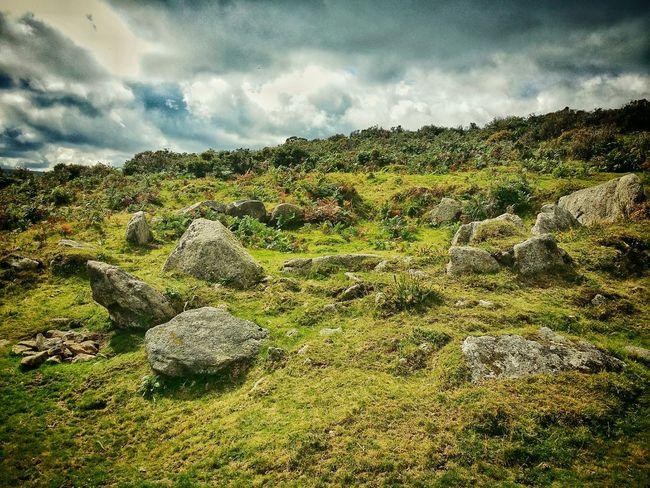 Draußen Dartmoor Landscape Nature Hiking Filter Madness