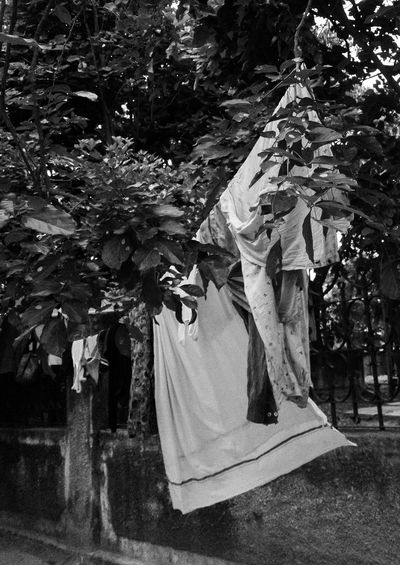 Women standing by plants against trees