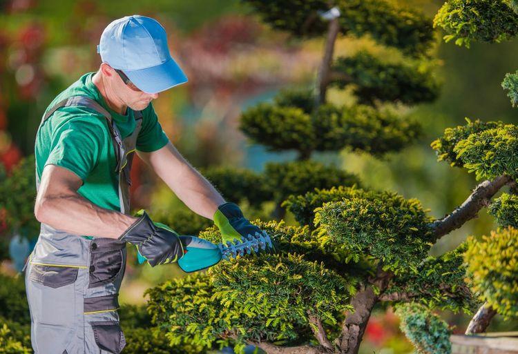 Man working at community garden
